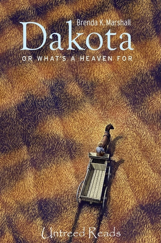 Dakota, Or What's a Heaven For (ebook) by Brenda K. Marshall